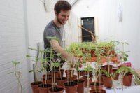 Student looking at pot plants